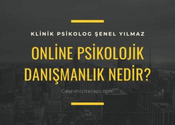 Online Psikolojik Danışmanlık Nedir?